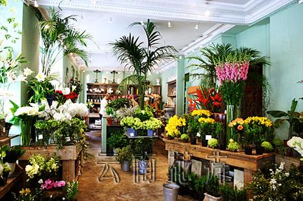国外花店店面布置欣赏